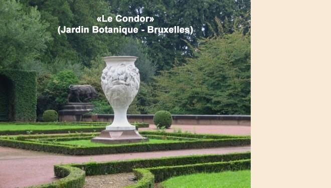 LE CONDOR JARDIN BOTANIQUE 660 WEB.jpg
