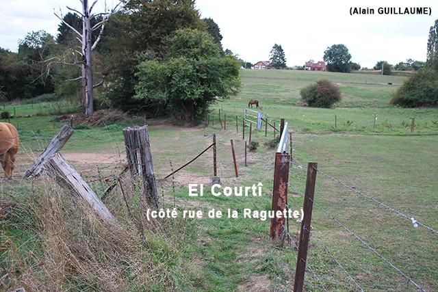 EL COURTI 640 1