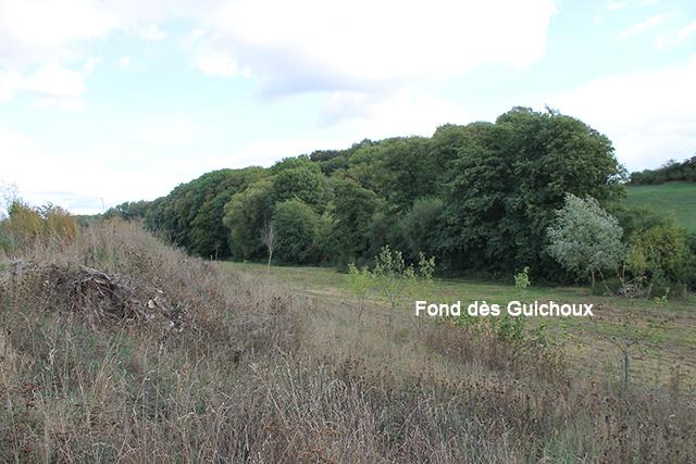 Fond des Guichoux 640