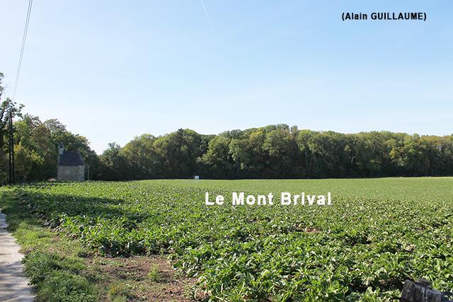 LE MONT BRIVAL 640