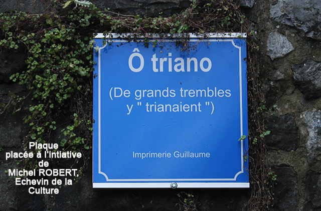 O TRIANO PLAQUE 640