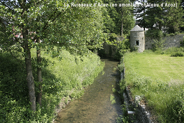 Ruisseau d'Acoz 640
