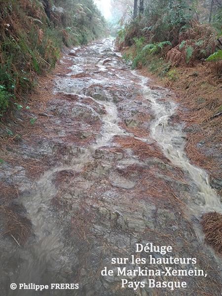 Déluge sur les hauteurs de Markina-Xemein, Pays Basque 450.jpg