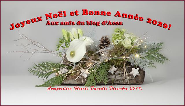 noel Acoz amis 2019 02