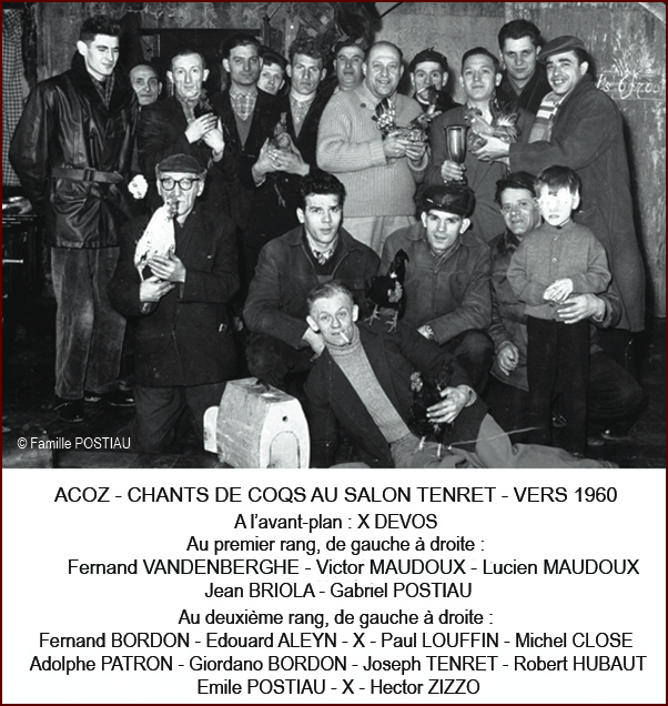 Chants de coqs 1960 640